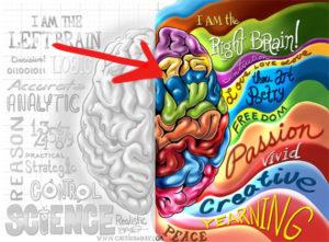 right-brain dominant