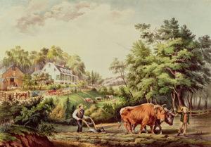 agrarian scene